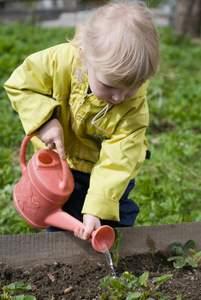 vegetable gardens for kids watering strawberries