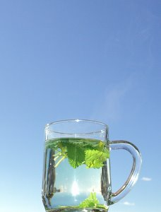 make homemade herbal teas lemon balm