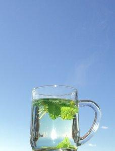 make homemade herbal teas lemon balm