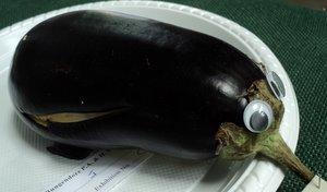 Eggplant Echidna