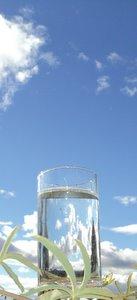 tall slim glass of fresh water