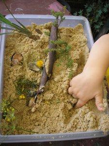 garden activities for kids zen garden