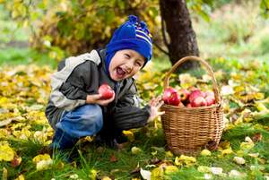 happy boy picking apples