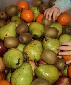 kid reaching for fruit