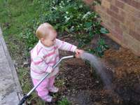 kid watering camellia