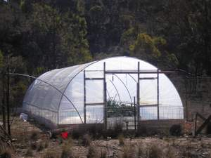 polytunnel south end length